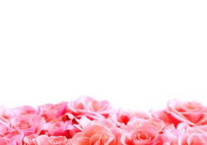 felicitari-online-trandafiri_roz-1337